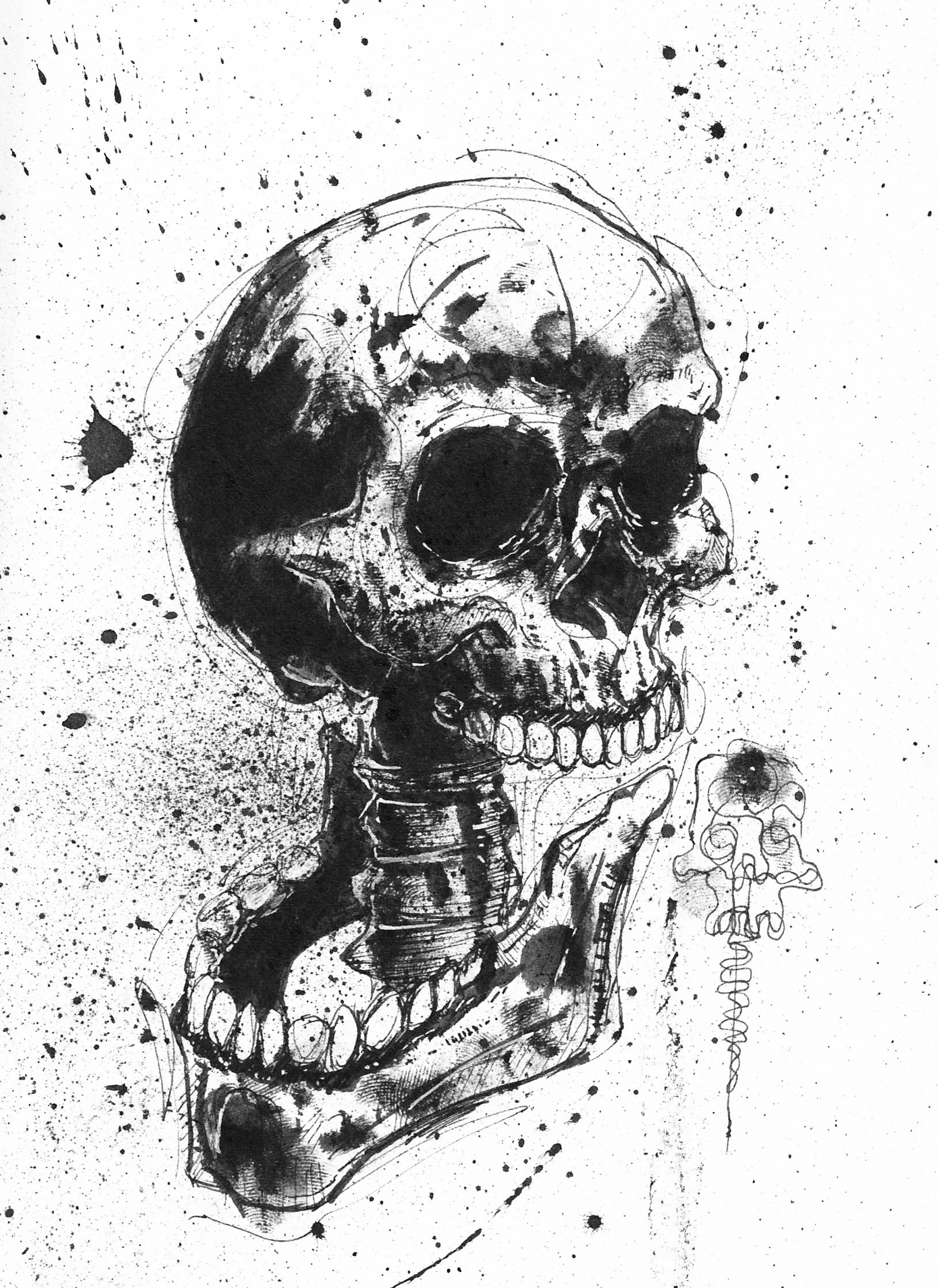 Skull With Jaw Dropped: Jaw Dropping